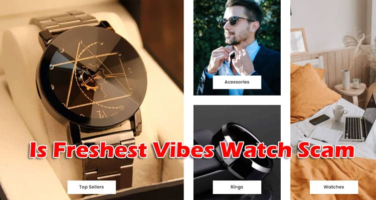 Is Freshest Vibes Watch Scam 2021